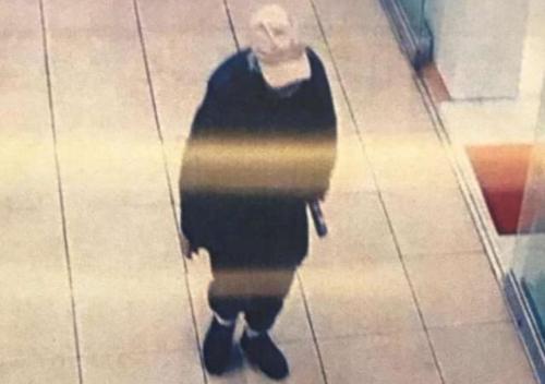 美纽约华裔老人失联多日 警方呼吁协助寻找