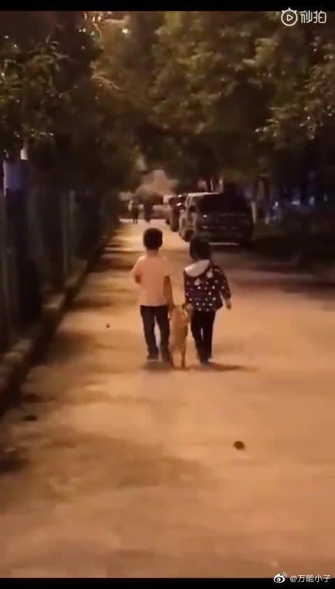 遛遛狗、手牵手 走一走!