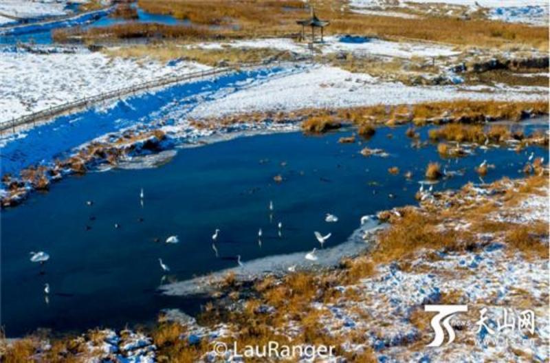【新疆是个好地方·达人西游第7季】一半田园一半水域 巴里坤全域旅游结硕果