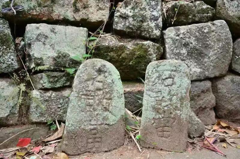 海口市龙华区龙桥镇王廷村石排名(大学)园林设计的文字敢当图片