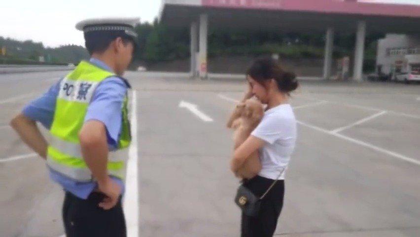 女子将狗落在服务区,高速交警帮忙火速找回