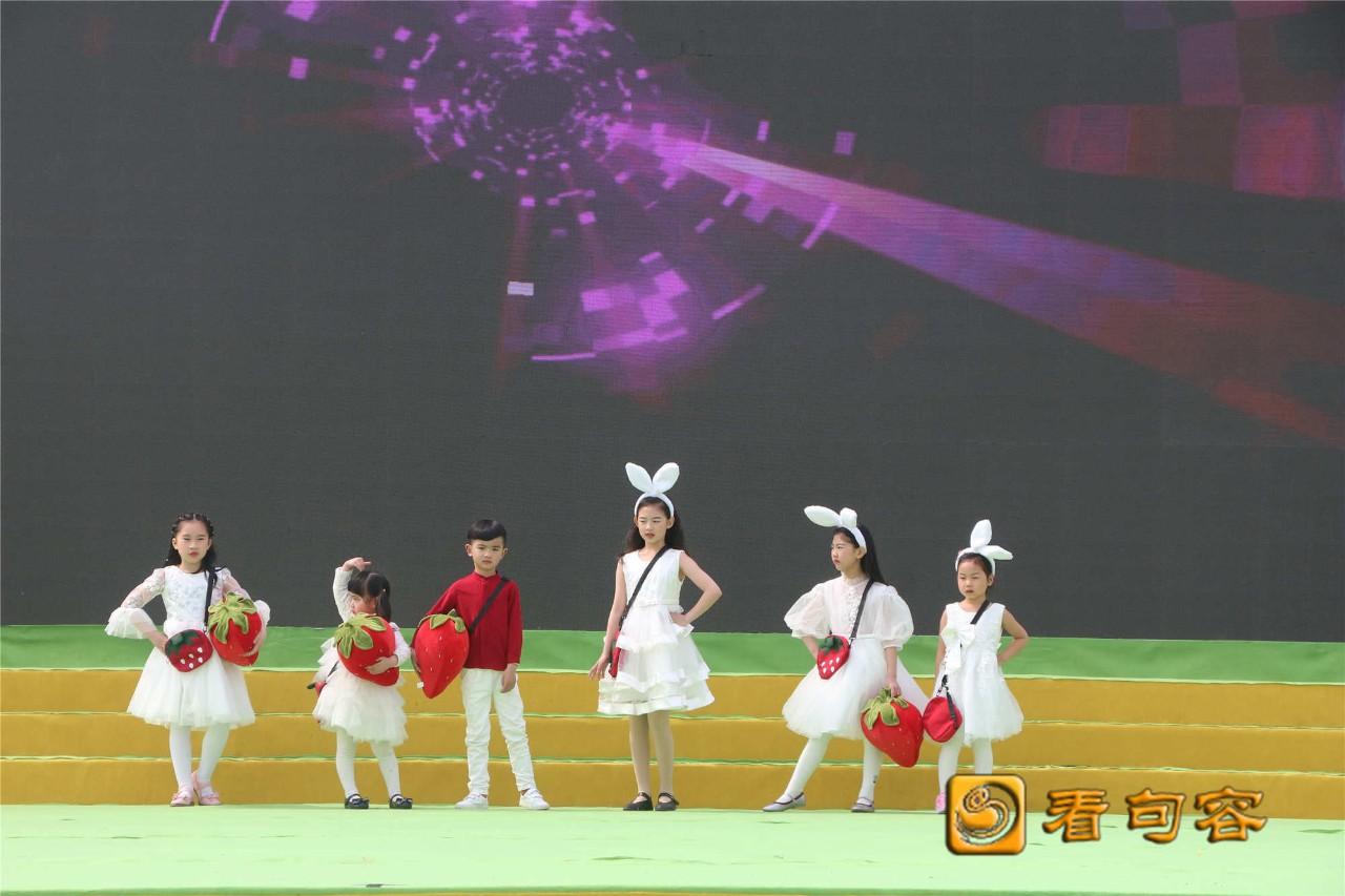 句容江苏第五届白兔草莓文化节盛大开幕!角蛙饲养箱用多大图片