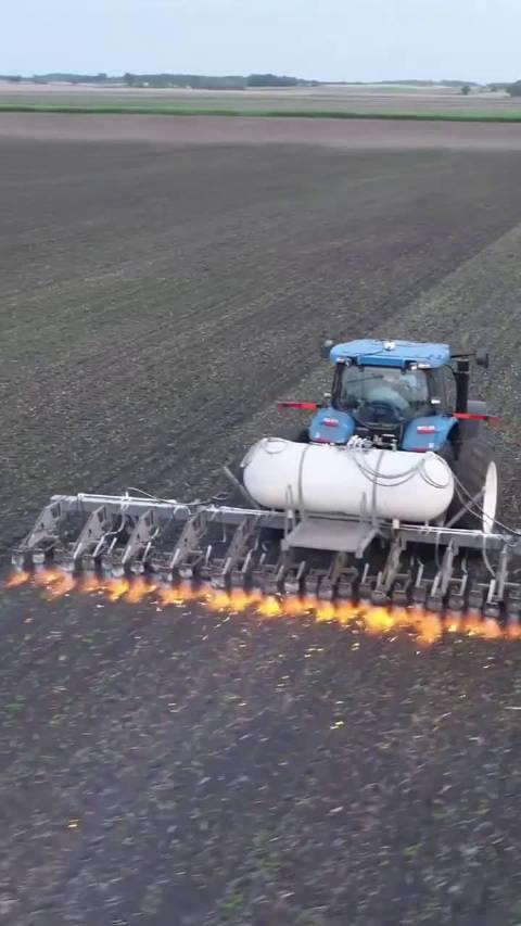 丙烷火烧除草法。