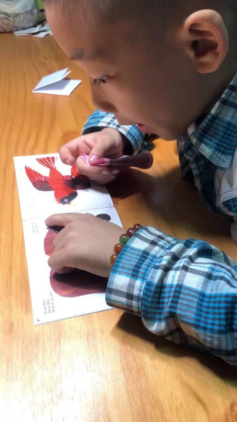 我陪球读英语绘本 http://t.cn/AirGcqG3