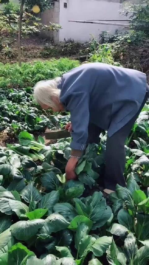 id筱尹 网友说,奶奶怕怕她家开销大,说能给她省点是点