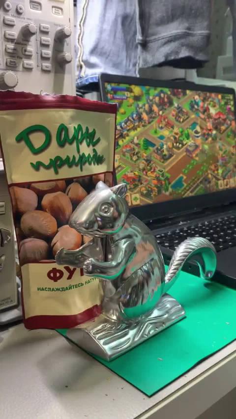 买了只松鼠给我剥坚果