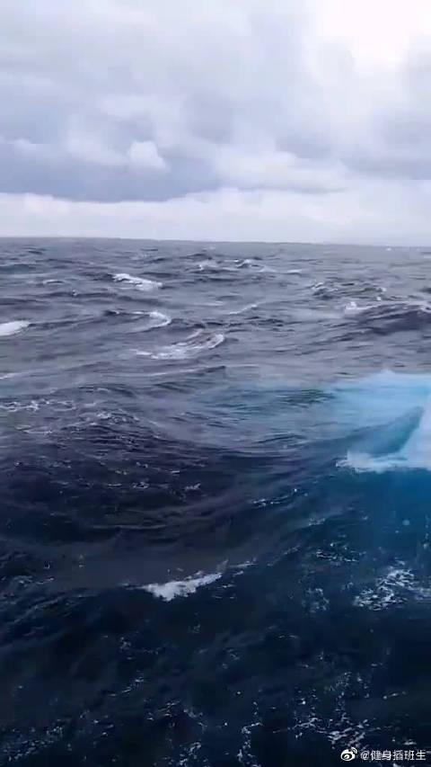 网友实拍于印度洋的超近距离画面