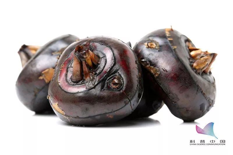蔬菜里竟然也有寄生虫!细思极恐,尤其是经常吃的这几种……