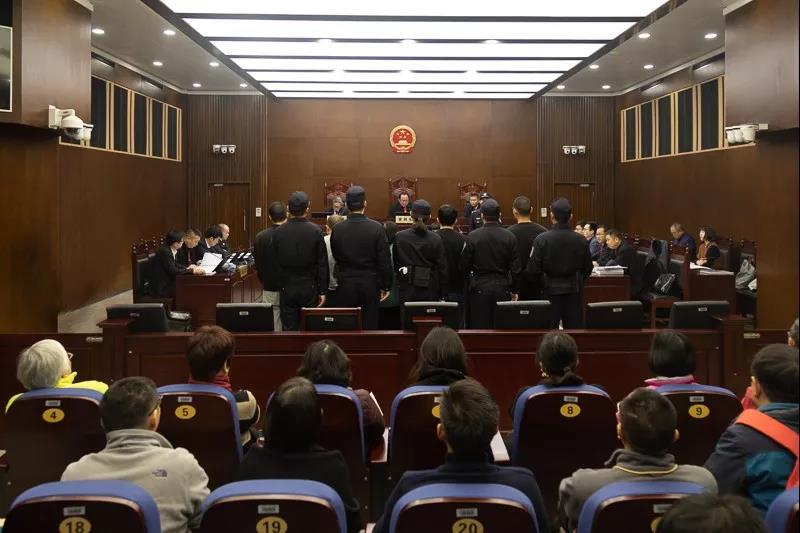 """""""金眼猫""""公司集资诈骗案一审 涉案金额超17亿"""