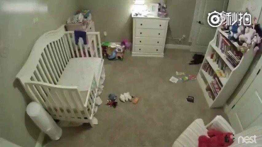 狗狗不被允许进入婴儿房,那天偷偷溜进去后被监控拍到原形,还是