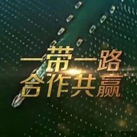 """【聚焦】贾晋京:这份值得世界关注的研究报告调查了""""一带一路""""的成效"""