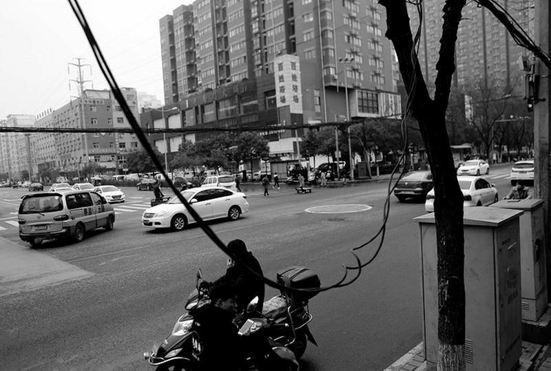 西安电子正街电缆垂落有隐患 部分线路绑树上