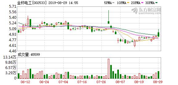 金杯电工股份有限公司公告(编号:2019-065)