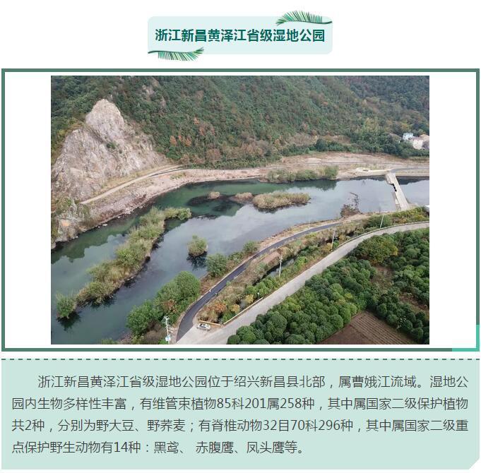 浙江新增12家省级湿地公园 快来看看
