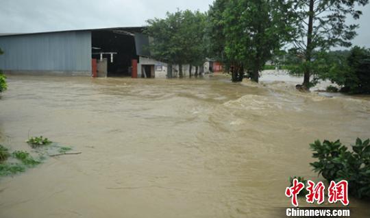 成都蒲江多地遭遇暴雨袭击 农田民房进水被淹(图)