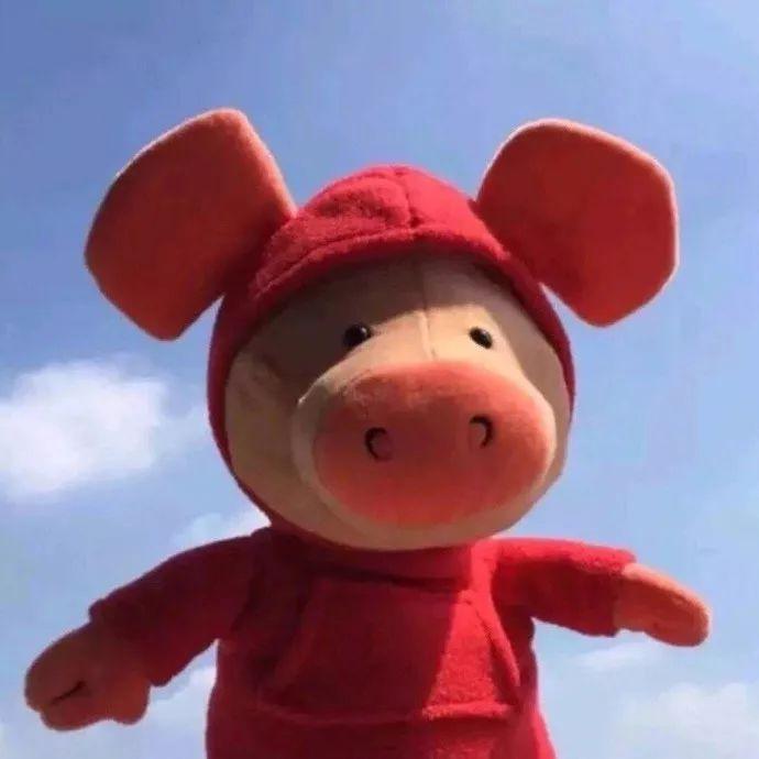 铃声壁纸鸭 | 一组可爱的猪猪头像 壁纸