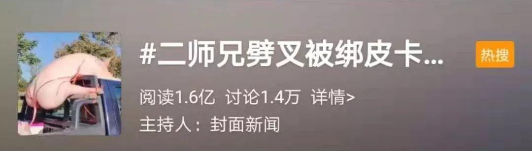 """沙巴体育游戏账号,我将小米8 SE的""""刘海""""隐藏了!现在这外观,你们会给几分?"""