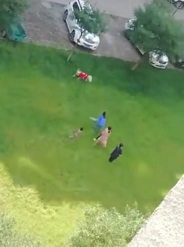 网友爆料:唐山某小区一孩子被狗咬伤,业主出门得拿棍。。。