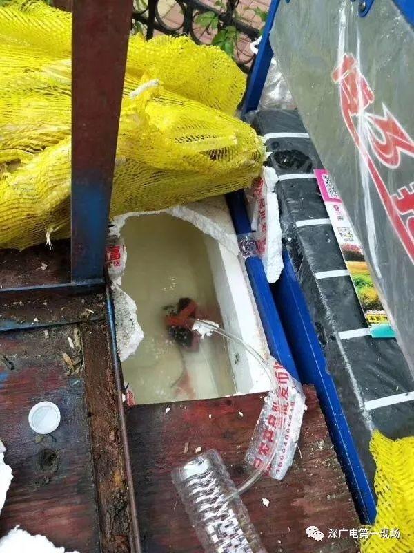 1条甘蔗能榨五杯甘蔗汁?这些街头榨汁机暗藏机关 - Wiley - 健康之路
