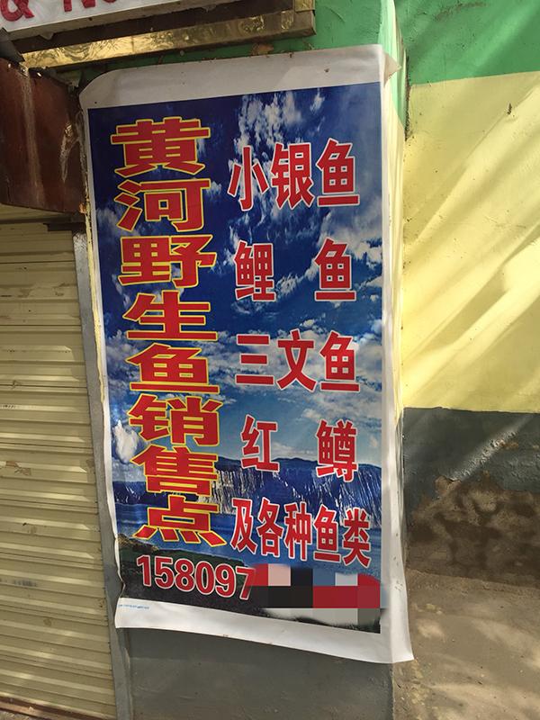http://www.zgqhl.cn/shishangchaoliu/14823.html