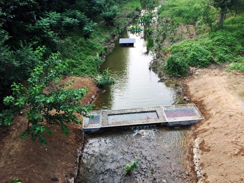 果各庄桥东知名河管理后的状况。白杉近景供图