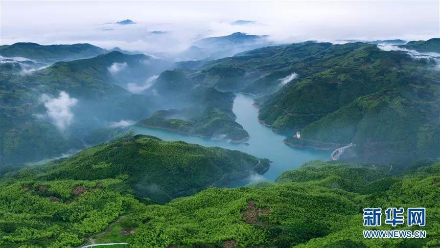 ▲福建省福鼎市桑园水库附近群山披绿,云雾缭绕。