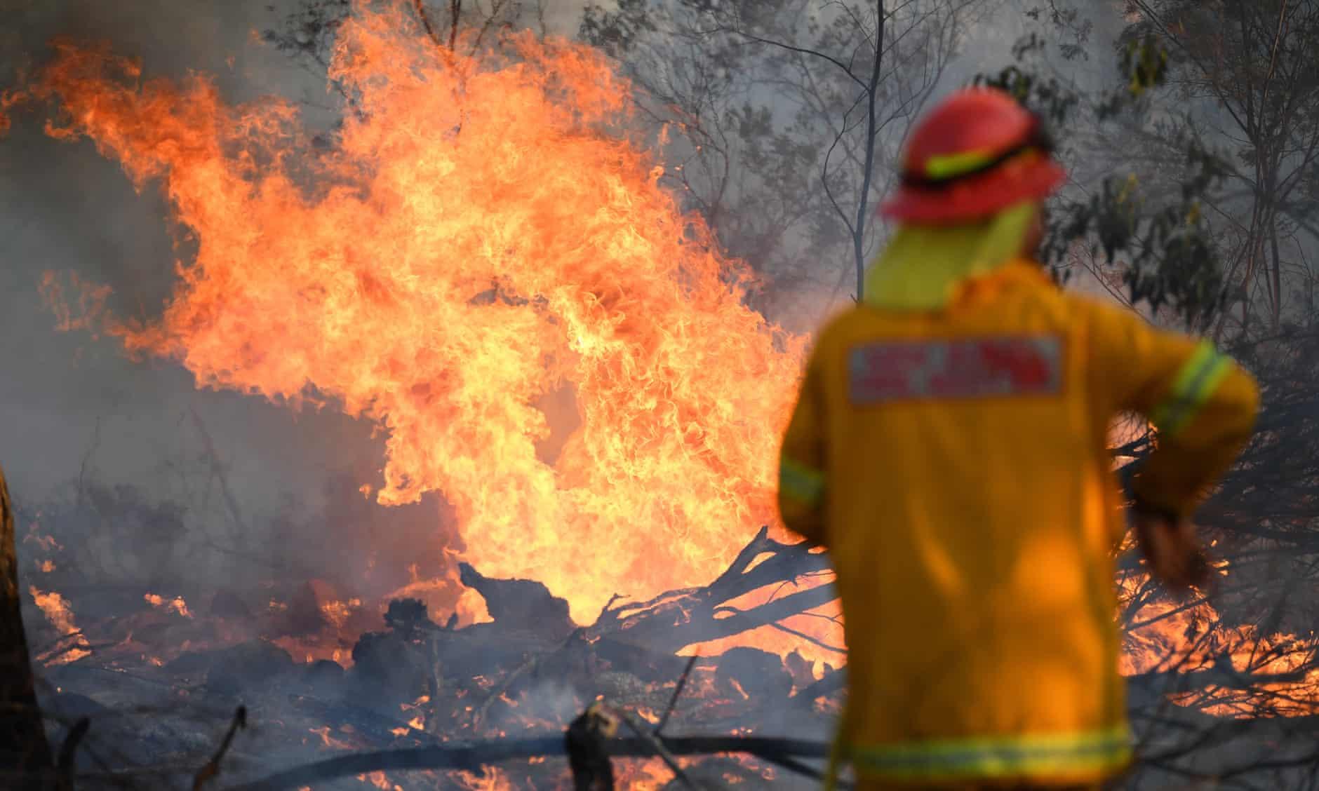 澳大利亚山火肆虐:数千人从家中撤离,数百所学校关闭