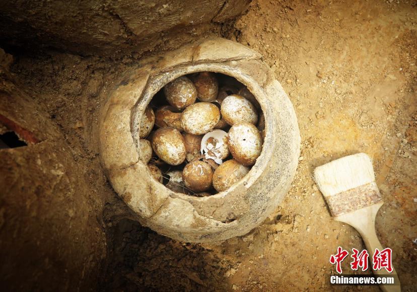 墨西哥男子挖隧道监视前妻 被发现时已丢半条命