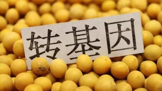美国转基因棉花和大豆的应用率为98%和94%
