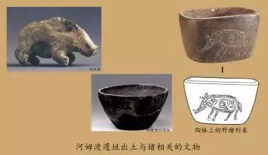 圖爲河姆渡遺址出土的與豬相關的文物,由受訪者供圖