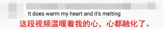 通博信誉pt_北京市市长陈吉宁:大兴机场场内服务车将全用新能源