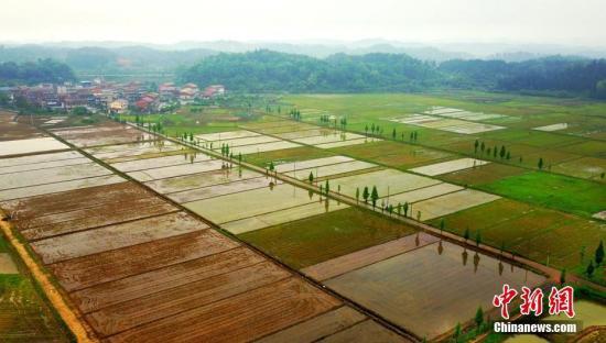 资料图:欣欣向荣的新农村。 赵春亮 摄