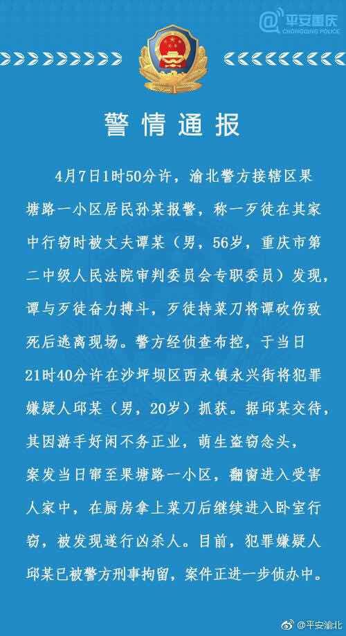 重庆二中院原副院长身亡 官方:被窃贼持菜刀砍死
