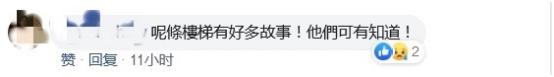 香港百年石梯疑遭暴徒涂污破坏网友痛斥节操何在