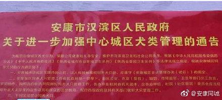 """黄金城集团网址-湖南女作家残雪成诺贝尔文学奖热门:被称为""""写作女巫"""",说一口长沙""""塑普"""""""