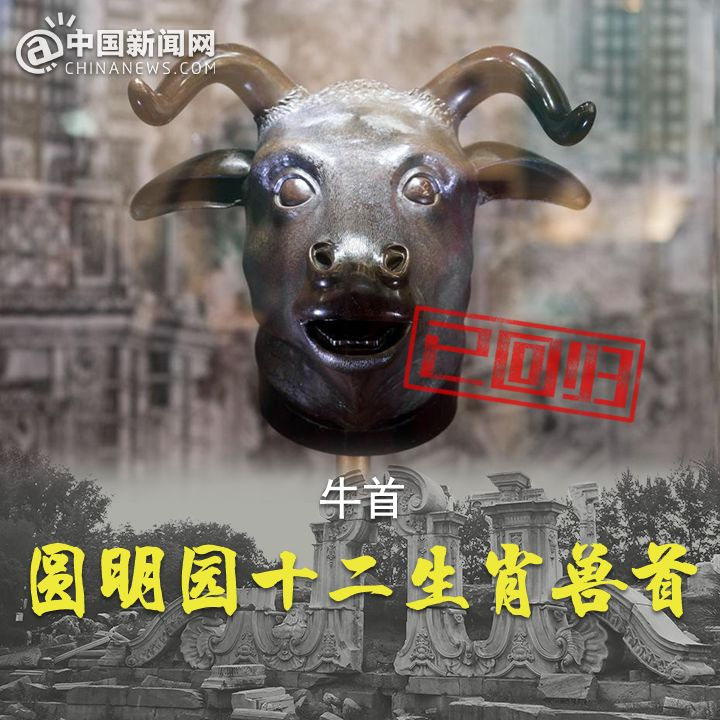 伯爵2娱乐app|上海:暂别阴雨 游人赏花