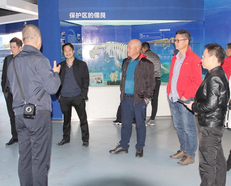 南宁北海商会考察合浦美人鱼旅游项目