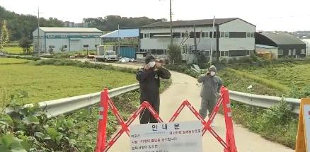 韩国当局封闭通往养猪场的门路 视频截图