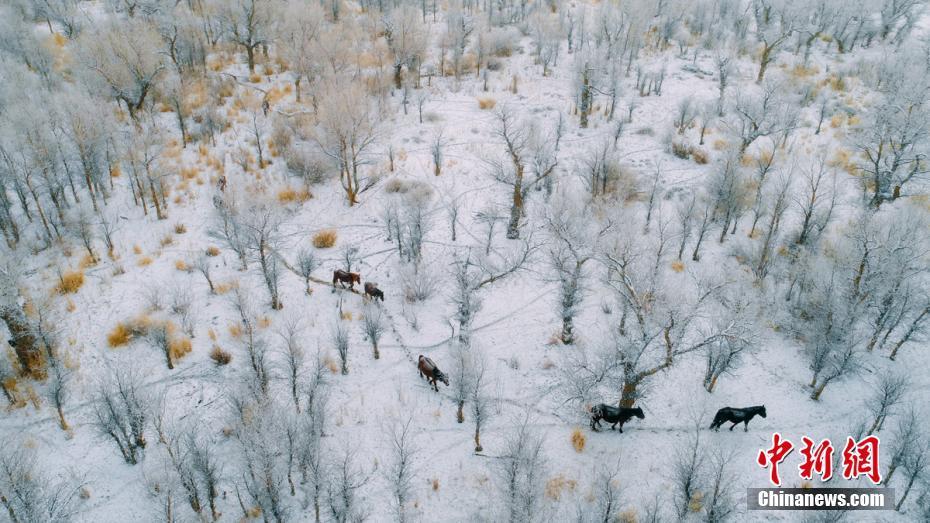 湖北天门一化工厂发生爆炸致5死1伤,工厂责任人被控制
