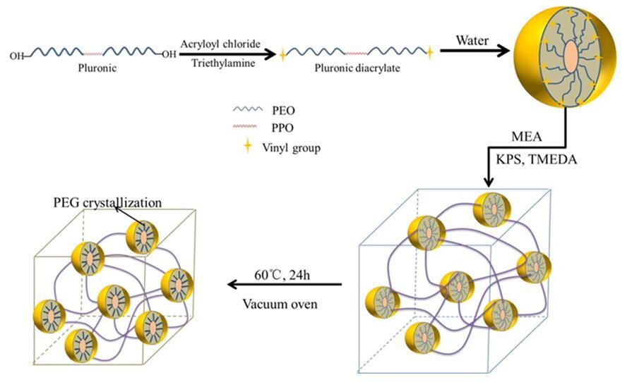 成都生物所等在水凝胶-弹性体复合功能材料研究中获进展