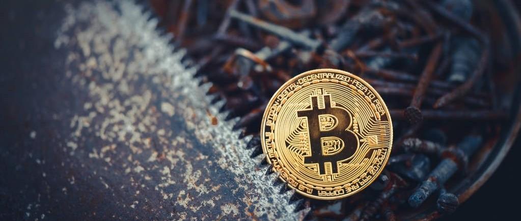 加密货币会不会真的像病毒一样扩撒?