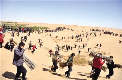 亿利集团在库布其沙漠植树造林