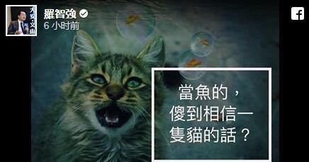 罗智强脸书图