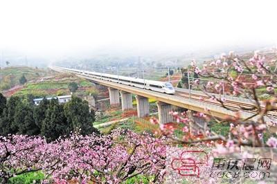 一列动车组列车行驶在成都至重庆成渝高铁线路上。