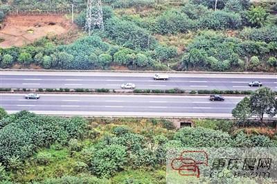成渝高速公路。 本文图片 重庆晨报