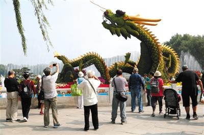 """昨日,北海公园,旅客正在""""龙腾乱世""""花坛前摄影纪念。新京报记者 侯少卿 摄"""