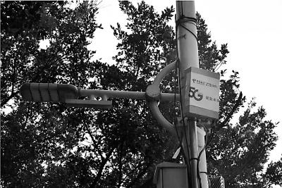 中国电信广东公司联合中兴通讯 打造首个5G CBD超大型展会精品网