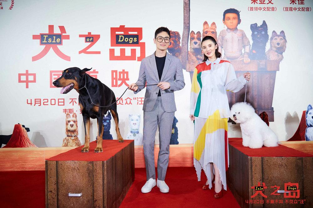 《犬之岛》首映 朱亚文宋佳变身汪星人