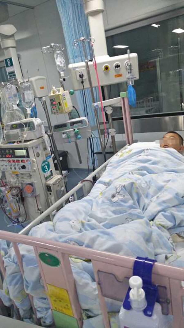 瘦弱的小龙躺在病床接受治疗。  本文图片均为杨博博 供图