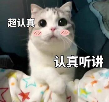 早报超有料丨妻夫木聪长泽雅美《唐探3》合体 林更新为大鹏新作站台